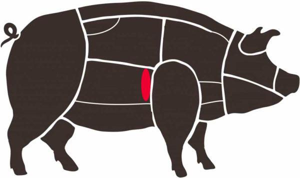 Secreto en cerdo ibérico